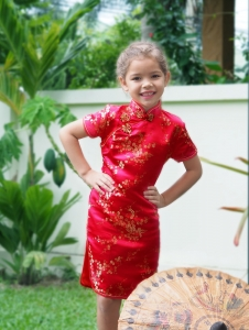 Qipao Chinese Dress for Girl QFRkid