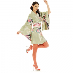 Sexy Geisha Kimono Dress Light Green